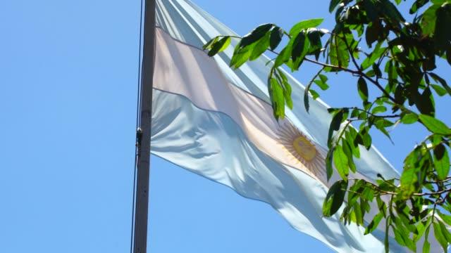 argentinische flagge schwenkt - argentinische flagge stock-videos und b-roll-filmmaterial