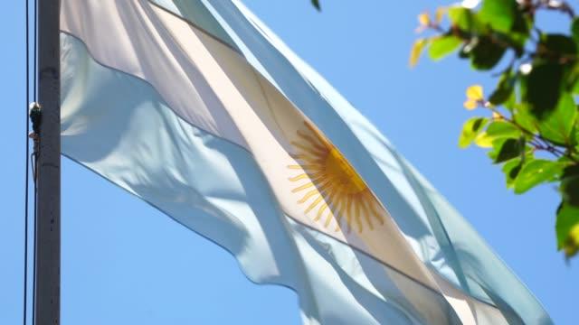 argentinian flag waving - bandiera dell'argentina video stock e b–roll