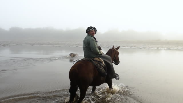 vídeos de stock e filmes b-roll de argentinian gaucho riding horses in the morning with fog and carry on shotguns - gaúcho