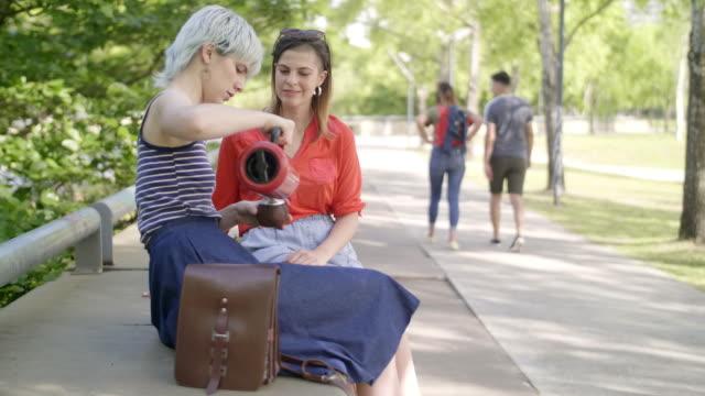 vídeos de stock e filmes b-roll de argentinian girlfriends at the park - porto madero