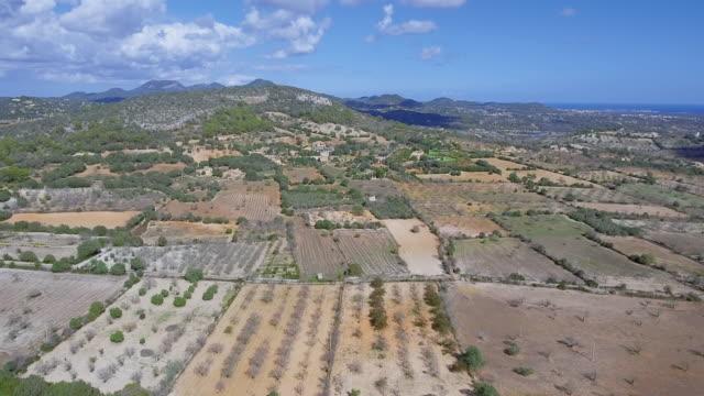 Arial Ansicht von kultiviertem Land und Landwirtschaft in der Nähe vom Dorf Alqueria Blanca auf Mallorca / Spanien