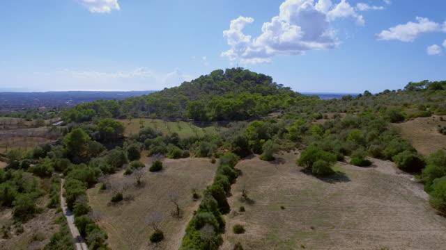 Arial Ansicht der Anbauflächen und der Landwirtschaft auf Mallorca / Spanien