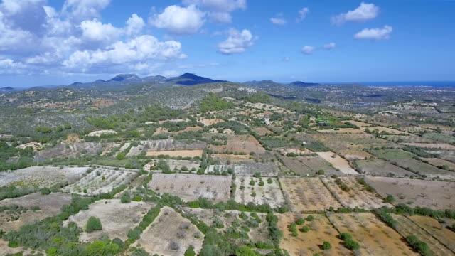 Arial Ansicht von Anbauflächen in der Nähe des Dorfes Alqueria Blanca auf Mallorca / Spanien