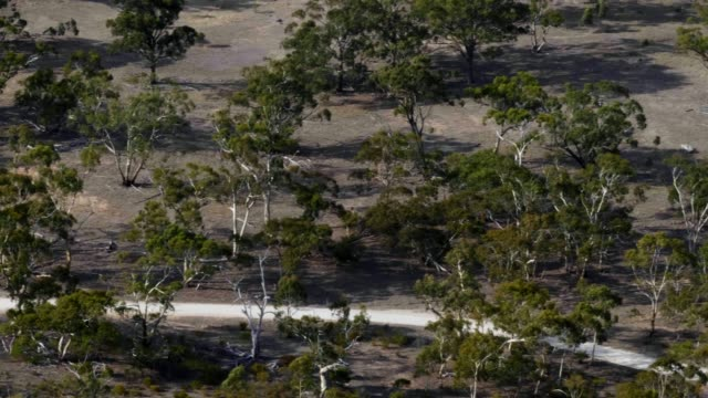 arial view of typical victorian countryside - bush stock videos & royalty-free footage