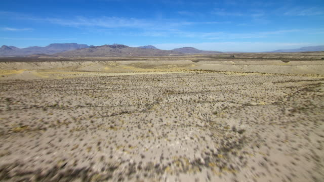 Arid desert shrubland in Big Bend National Park, Texas.