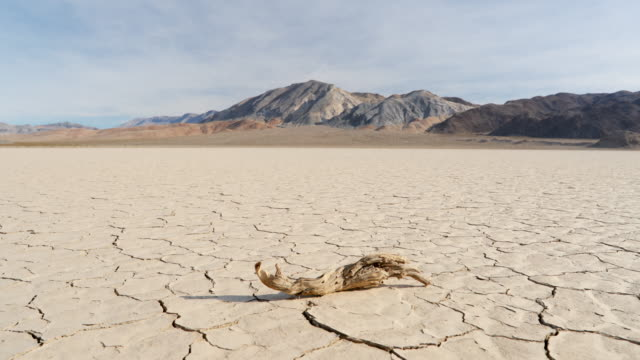 ds, ws arid, dry cracked earth in california - climate change stock videos & royalty-free footage