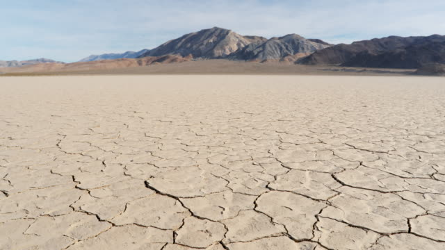 ws arid, dry cracked earth in california - terra brulla video stock e b–roll