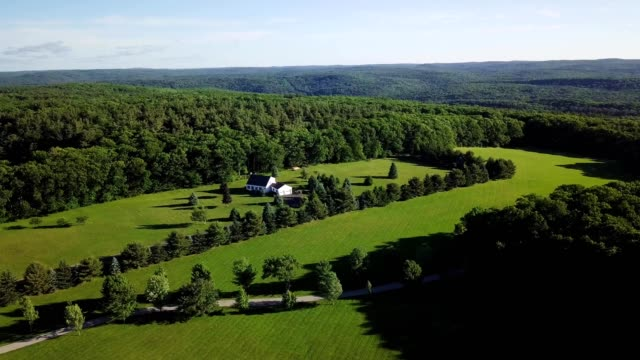 ariel view of green rolling hills in blandford massachusetts - massachusetts stock-videos und b-roll-filmmaterial