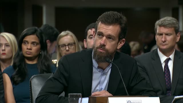 arkansas senator tom cotton asks twitter ceo jack dorsey at a senate intelligence committee hearing or why dataminr ceased cooperating with russian... - sputnik stock videos & royalty-free footage