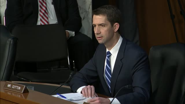arkansas senator tom cotton asks twitter general counsel sean edgett why his firm had denied the central intelligence agency access to data sourced... - sputnik stock videos & royalty-free footage