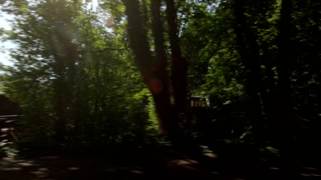 arlington heights xxix synced series left view driving process plate - portland oregon bike stock videos & royalty-free footage