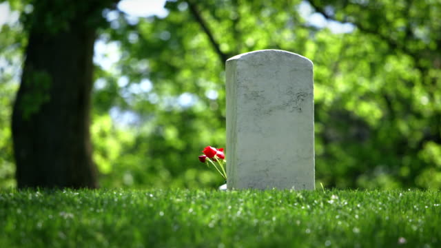 cimitero nazionale di arlington a molla singola grave con fiore - arlington virginia video stock e b–roll