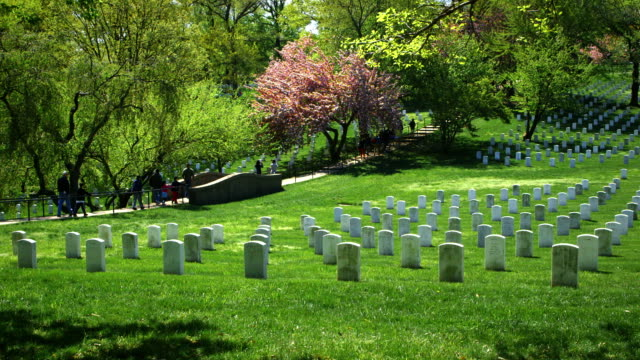 arlington national cemetery in spring - arlington virginia stock videos & royalty-free footage