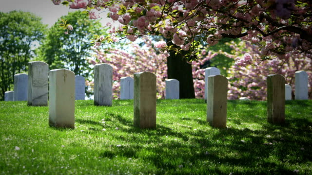 arlington national cemetery in spring - arlington virginia stock videos and b-roll footage