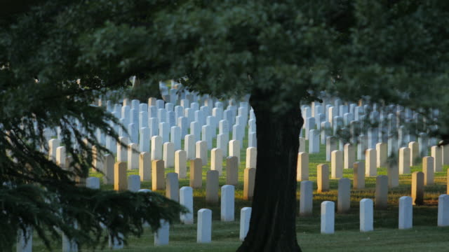 arlington national cemetery - arlington virginia stock videos and b-roll footage