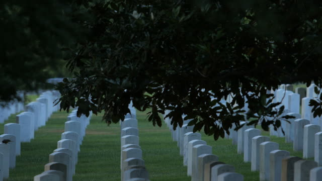 arlington national cemetery - arlington national cemetery stock videos and b-roll footage