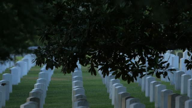 アーリントン国立墓地 - アーリントン国立墓地点の映像素材/bロール