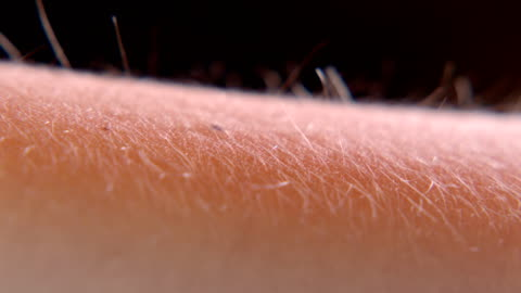 arm hairs - human arm stock videos & royalty-free footage