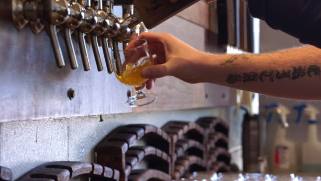 Arm of Caucasian bartender pouring craft beer