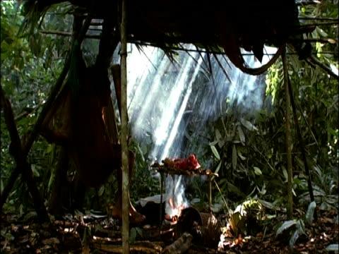 Armadillo cooks on open fire as Sanema man sits in hammock Southern Venezuelan Rainforest
