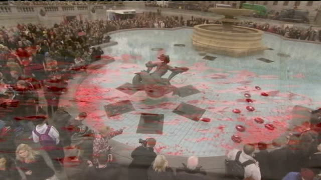 anniversary services held throughout the country trafalgar square **hymn heard over following** close shot of remembrance day poppies flaoting on... - remembrance day stock videos and b-roll footage
