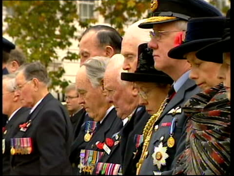 Queen unveils memorial POOL ENGLAND London Hyde Park Wellington Arch Ceremony underway at new Australian war memorial PULL OUT MS SIDE Line of...