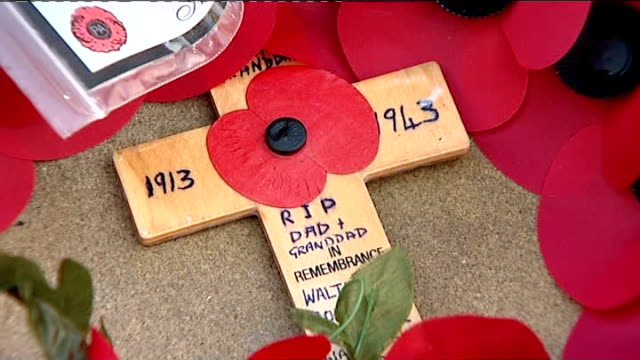 armistice day wreaths and poppies on war memorial reporter to camera - kranz stock-videos und b-roll-filmmaterial