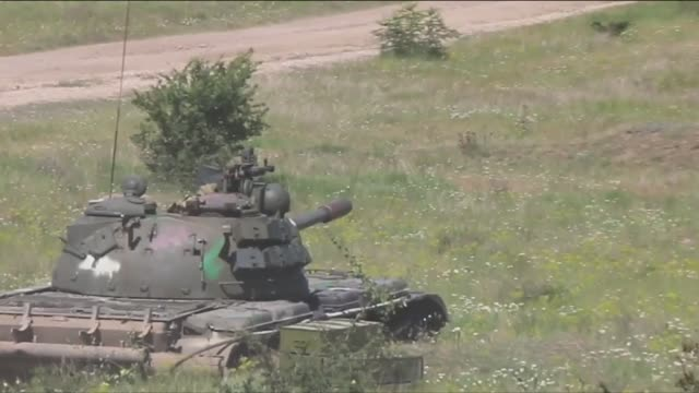 vídeos y material grabado en eventos de stock de us army and romanian joint force command conduct live fire exercise during saber guardian romania - vegetal con hoja