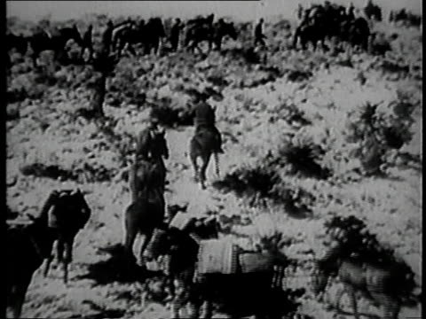 army cavalry on pancho villa's trail / mexico - recreational horse riding stock videos & royalty-free footage