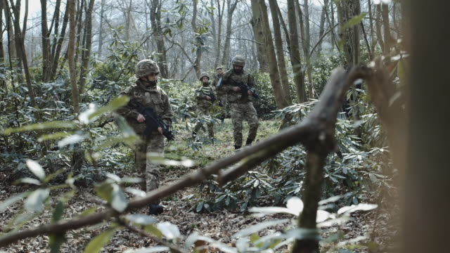 army exercise in forrest - army stock-videos und b-roll-filmmaterial