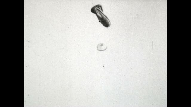 US Army Signal Corps film of an Observation Balloon being attacked The pilot uses his parachute to escape a fiery death
