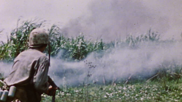 vídeos de stock, filmes e b-roll de s army soldiers throwing grenades to flush out possible remaining enemy soldiers within high vegetation / okinawa japan - guerra do pacífico