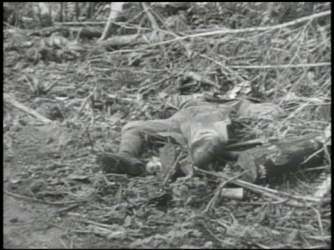 army soldiers walking over tree trunks graphic vs dead japanese soldiers w/ bodies in various stages of decay decomposition american soldiers... - battle stock videos & royalty-free footage