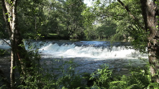 arnoia river - galicia stock videos & royalty-free footage