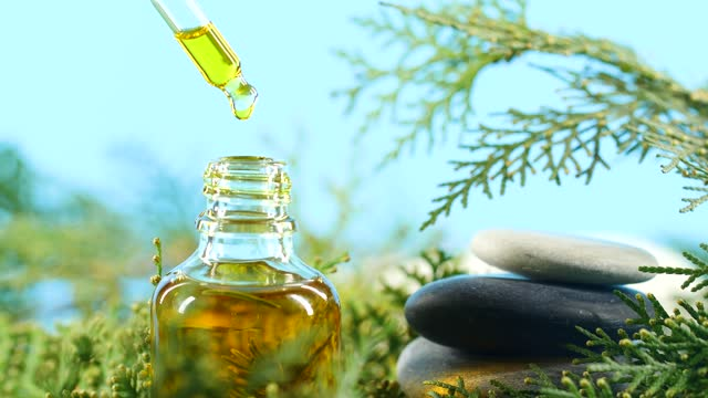 aromatherapy herbal oil from dropper - pine tree stock videos & royalty-free footage