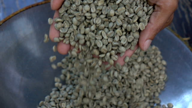 aromatic roasted coffee beans,hands testing quality in slow motion - origins stock videos & royalty-free footage