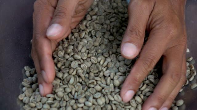vídeos y material grabado en eventos de stock de granos de café tostados aromáticos, calidad de la prueba de las manos en cámara lenta - orígenes
