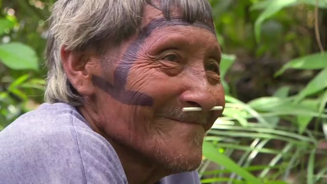 around 200 brazilian indigenous arara people live in laranjal village on the edge of the iriri river in brazil's northern state of para - para state stock videos & royalty-free footage