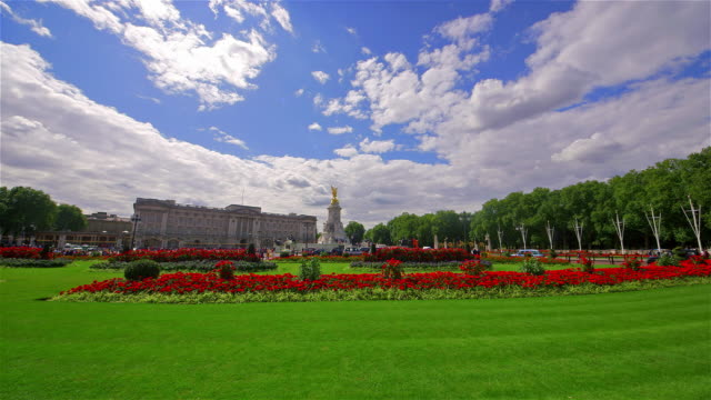 around buckingham palace - blumenbeet stock-videos und b-roll-filmmaterial