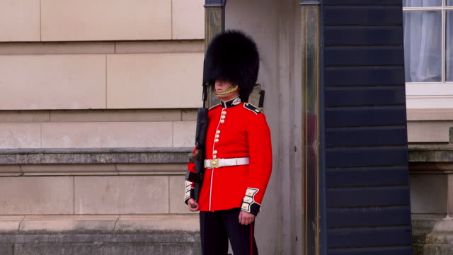 around buckingham palace - honour guard stock videos & royalty-free footage