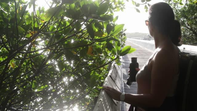 vídeos y material grabado en eventos de stock de cu pan around woman in nature park - cabello recogido