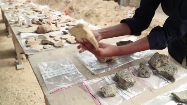 arqueologos hallaron en una obra de tel aviv fragmentos de vasijas de 5000 anos de antiguedad que los egipcios utilizaban para hacer cerveza - arqueologia stock videos & royalty-free footage