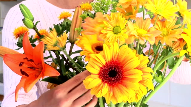 vídeos de stock e filmes b-roll de arranging flowers - jarra recipiente