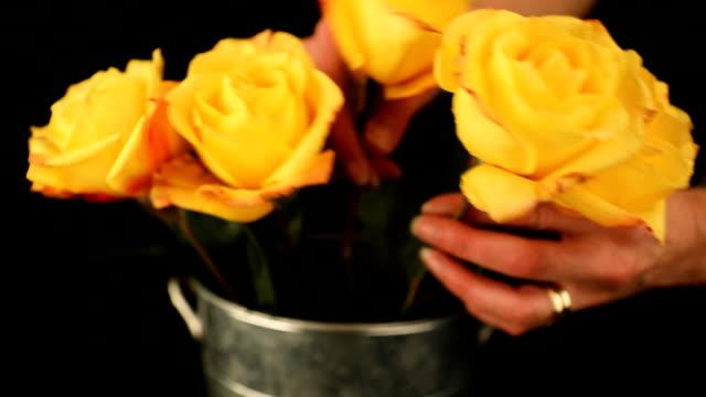 arranging roses - vase stock videos & royalty-free footage