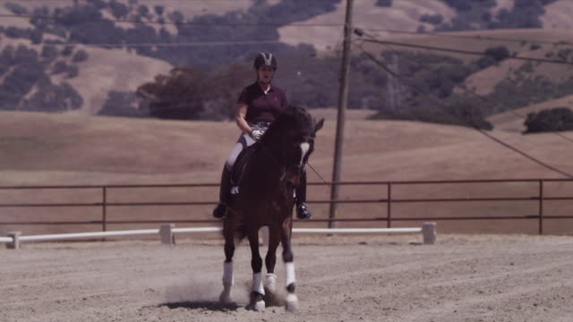stockvideo's en b-roll-footage met arriba vista ranch, dressage ring, lin guides horse across ring, camera tilts to close-up on hooves - alleen één mid volwassen vrouw