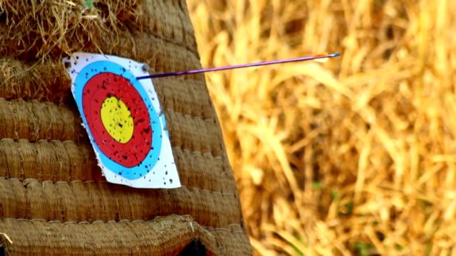 vídeos de stock, filmes e b-roll de de atingir do alvo. - bow and arrow