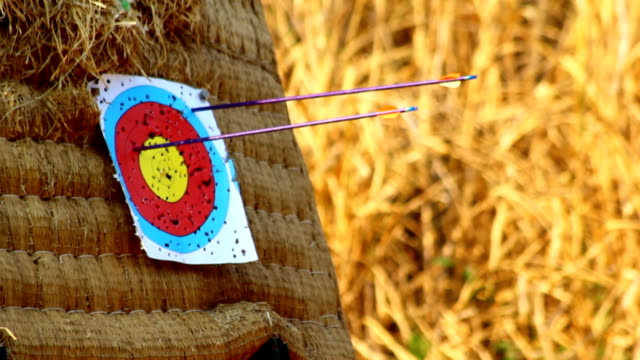 arrow hitting target - hay stock videos and b-roll footage