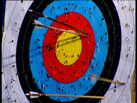 Arrows hit archery target