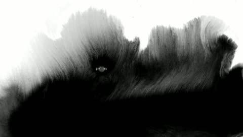 墨蹟飛濺的藝術 - 磨砂 個影片檔及 b 捲影像