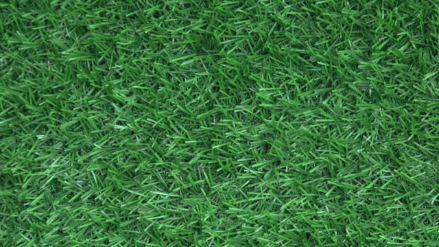 artificial grass background - grass family stock videos & royalty-free footage